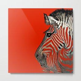 Zebra Red Metal Print