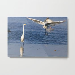 One Time is Never Enough Metal Print