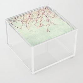Chinese Spring Acrylic Box