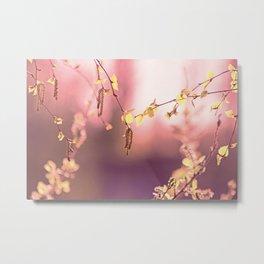 Hazelnut in spring light Metal Print