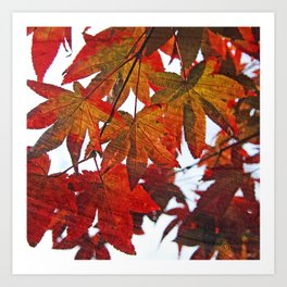 Autumn Leaves in Red and Orange Art Print