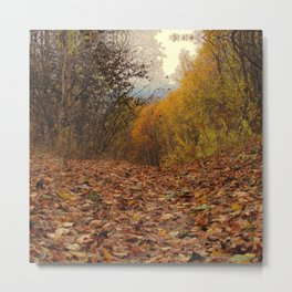 Autumn 6 Metal Print