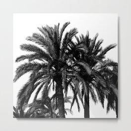 Black and white landscape II Metal Print