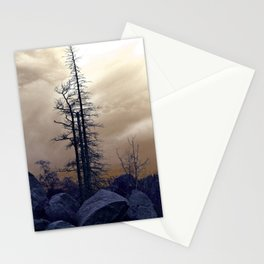 Dead Tree At Needles Highway Stationery Cards
