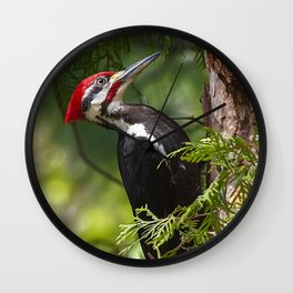 Pileated Woodpecker 6340 Wall Clock