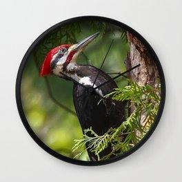 Pileated Woodpecker 6340 Wall Clock