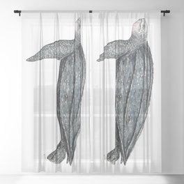 Leatherback turtle (Dermochelys coriacea) Sheer Curtain
