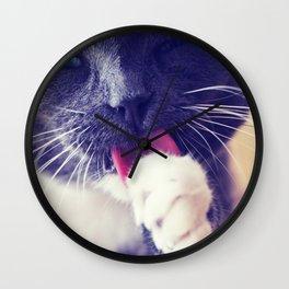 Grooming Cat Wall Clock