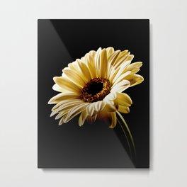 Floral Highlights Metal Print