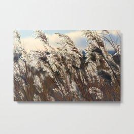 Waving Grass Metal Print