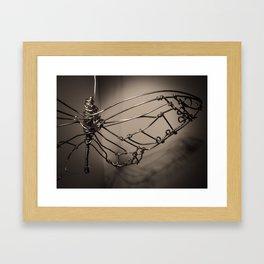 Broken Butterfly  Framed Art Print