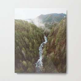 Vance Creek Metal Print