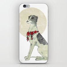 GREYHOUND iPhone & iPod Skin