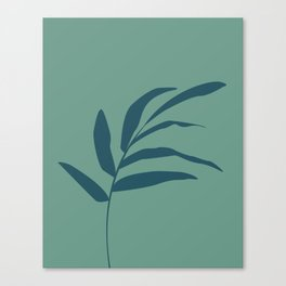 Teal tree branch Canvas Print