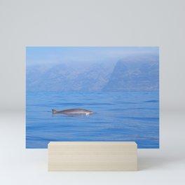 Beaked whale in the mist Mini Art Print