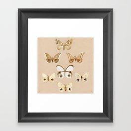 pale moths Framed Art Print