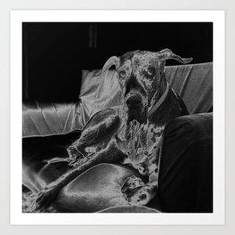 TAMIS - GREAT DANE Art Print