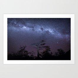 Milky way in Botswana's Bush Art Print