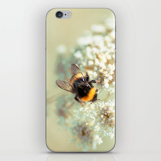 Bumblebee. iPhone & iPod Skin
