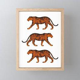 Tigers (White and Orange) Framed Mini Art Print