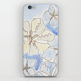 Maine Sand Dollars - Blue and Yellow Tones iPhone Skin