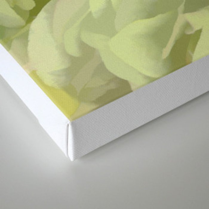 Soft Green Petal Ruffles Abstract Canvas Print