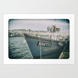 BM113 Art Print