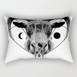 B666 Rectangular Pillow