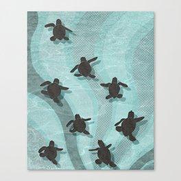 Loggerhead sea turtle hatchlings Canvas Print