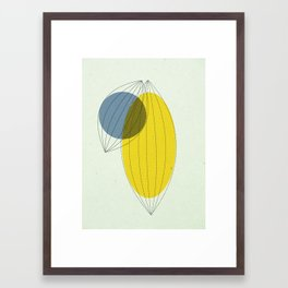 Fig. 1a Framed Art Print