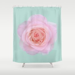 rose by another name: pink ghost on eau de nil Shower Curtain