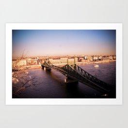 Szabadság híd Art Print