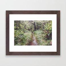 Lush Pathway Framed Art Print
