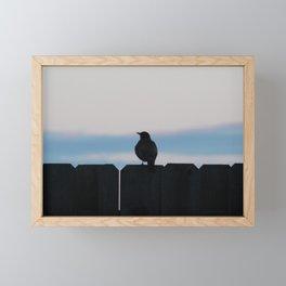 Bird on Fence Framed Mini Art Print