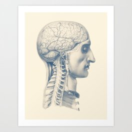 Brain and Spinal Anatomy - Side View  - Vintage Anatomy Art Print