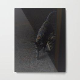 Black and Brown Cat in Japanese House Metal Print