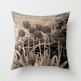 sepia tulip clump Throw Pillow