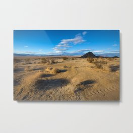Desert Views Metal Print