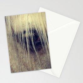 Palomino Horse Eye Stationery Cards