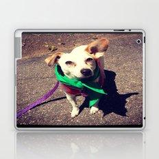 Blanca Boo To The Rescue Laptop & iPad Skin