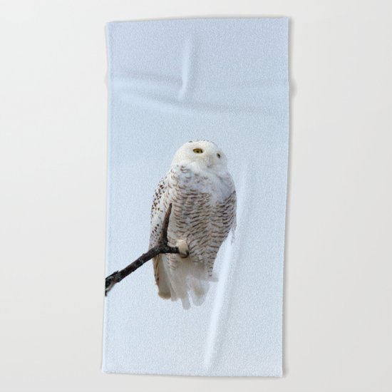 Lofty Vision (Snowy Owl) Beach Towel
