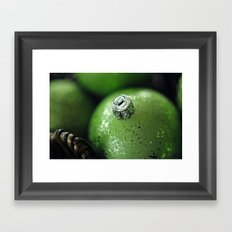 Ornament 1 Framed Art Print