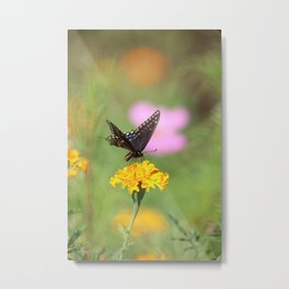 Swallow Tail Dream Metal Print