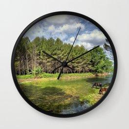 river valencia horse castellon summer drink spain Wall Clock