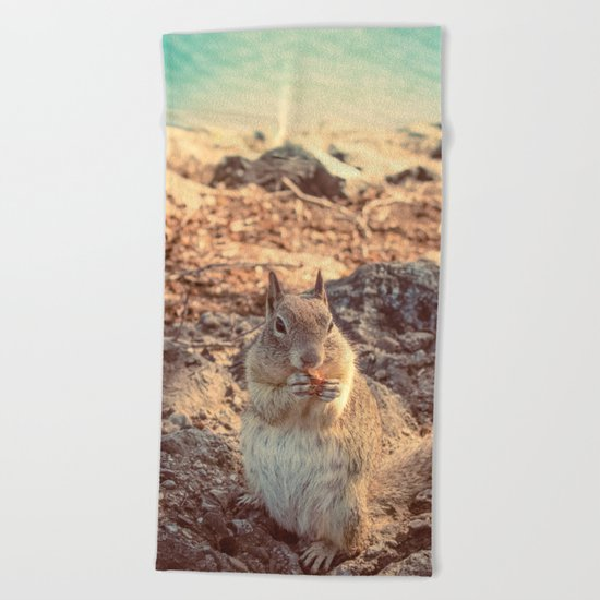 Happy Fluffy Squirrel Beach Towel