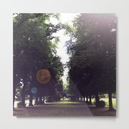 The Tree-Lined Path Metal Print