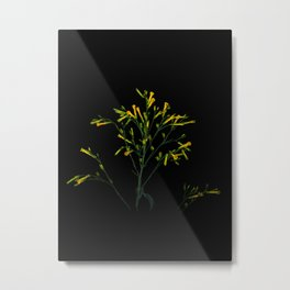 Yellow flowers & Green plant - 123 Metal Print
