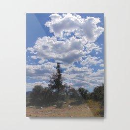 Conifer Against the Sky Metal Print