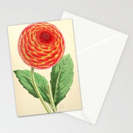Andrews, James (1801-1876) - The Floral Magazine 1869 - Dahlia Stationery Cards