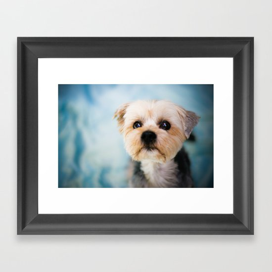 Puppy Framed Art Print